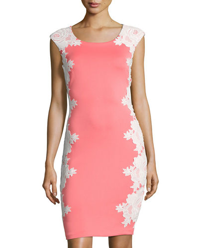 Floral Lace Applique Sheath Dress