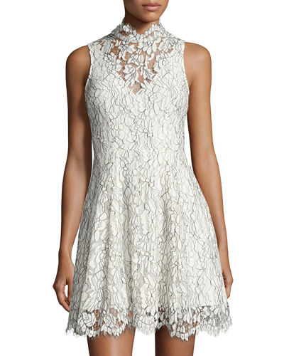 Porcelain Fit Flare Lace Dress