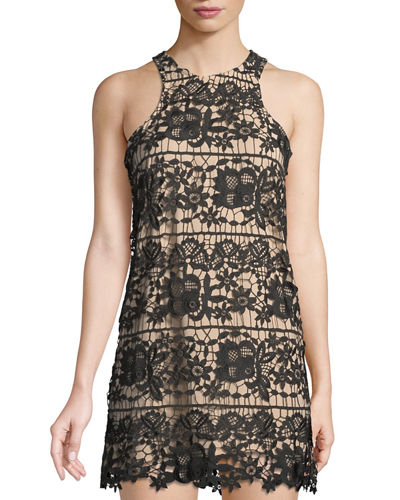 Caspian Lace Shift Dress