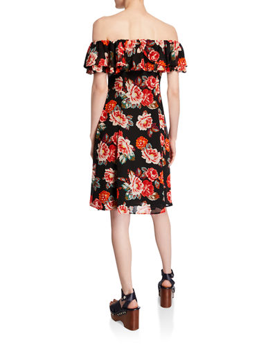 Cassidy Lace-Up Floral Ruffle A-Line Dress