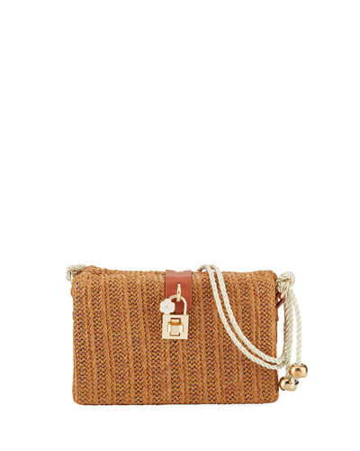 Straw Framed Crossbody Bag